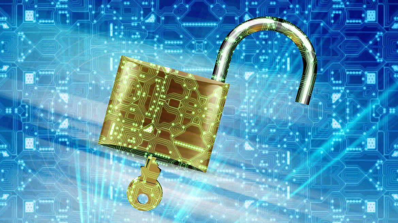 MKB in 2020 vaker doelwit van cyberaanvallen | eLive